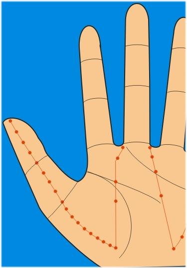 meridianos programa de acupuntura