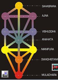 programa de chakras